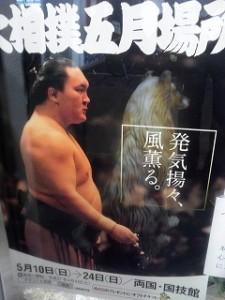 大相撲 夏場所